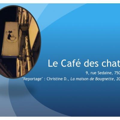 Le Café des Chats (décembre 2016)