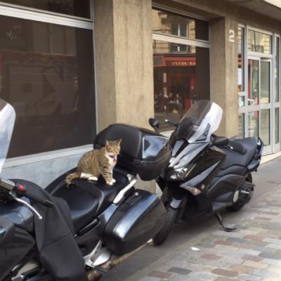 Lisa, sur la moto