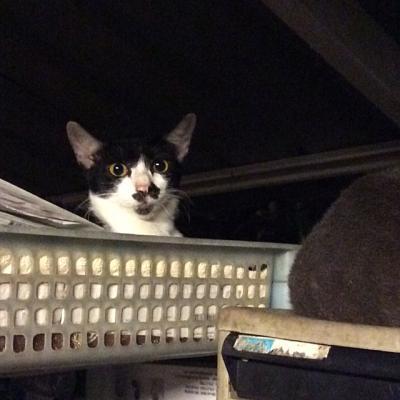 A Karon, dans le garage de l'hotel
